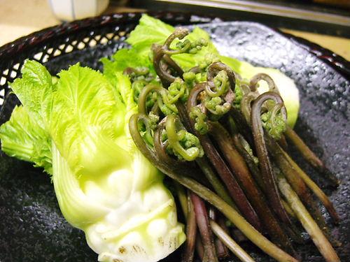 旬の蕾菜・蕨