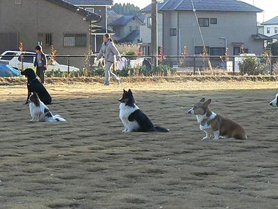 2010-01-01・練習風景・08