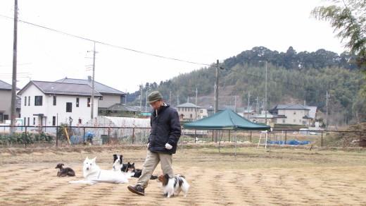 2010-02-14・脚側行進」・緩歩