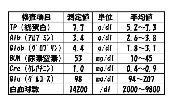 血液検査結果(ブログ用)[1]