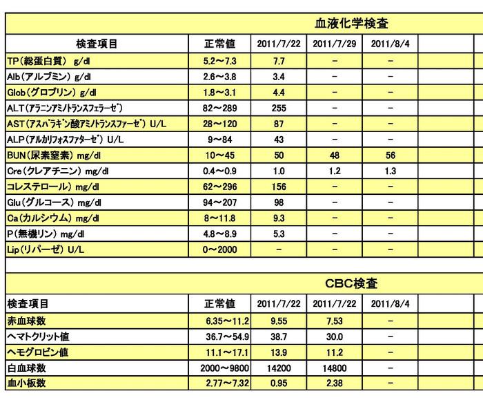 20110804血液検査結果ペ[1]