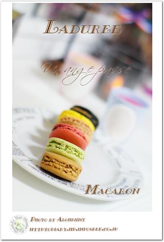 10c-macaron.jpg