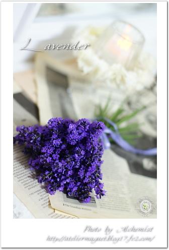 6-lavender.jpg