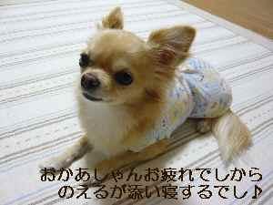 blog2009102202.jpg