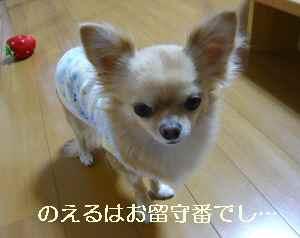 blog2009102401.jpg