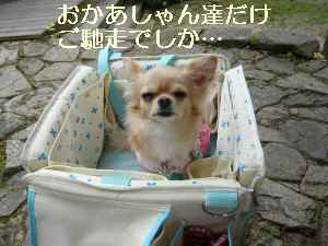 blog2009102505.jpg