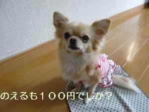blog2009102902.jpg