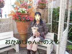 blog2009103106.jpg