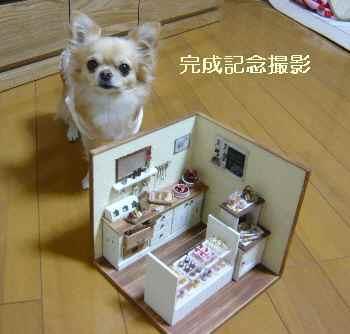 blog2009111102.jpg