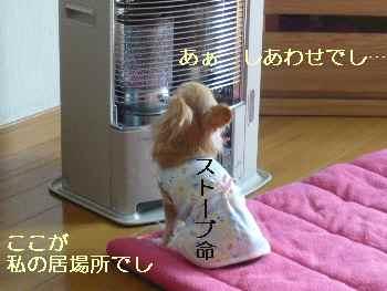 blog2009111802.jpg