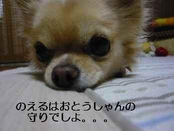 blog2009111902.jpg