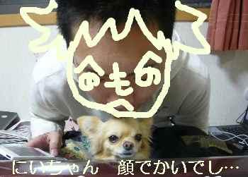 blog2009112402.jpg