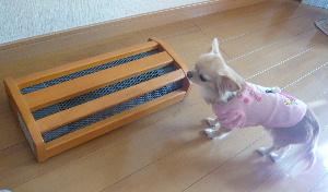 blog2009112708.jpg
