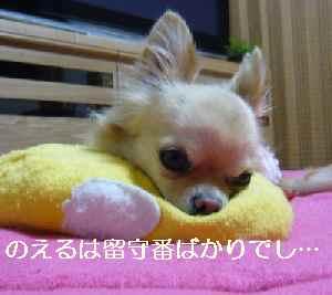 blog2009120701.jpg