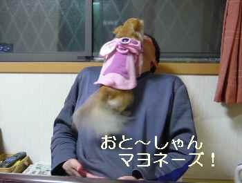 blog2009120801.jpg