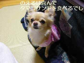 blog2009120901.jpg