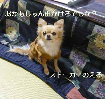 blog2009121601.jpg