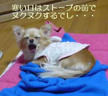 blog200912201.jpg