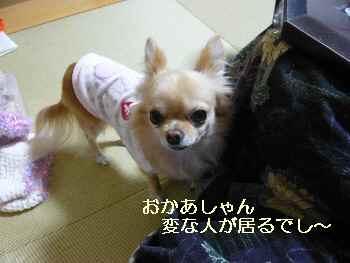 blog200912202.jpg