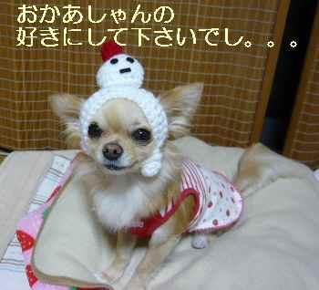 blog20091227.jpg