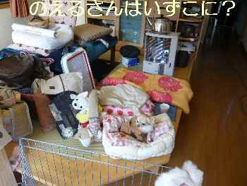 blog2009122901.jpg