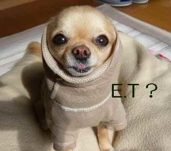 ETって何でしか?