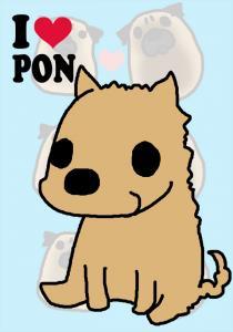 pon-1.jpg