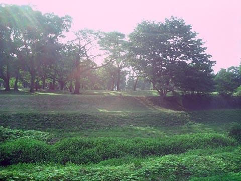野川公園風景トップ091003