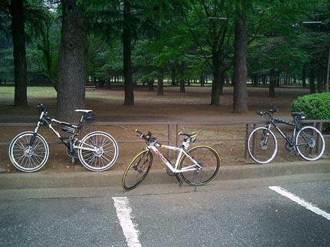 野川公園駐車場前メイン