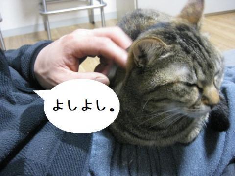 IMG_0146.jpg