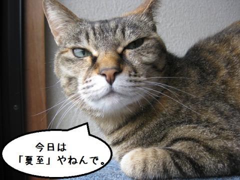 IMG_0485.jpg