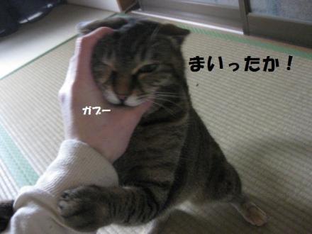 IMG_5626.jpg