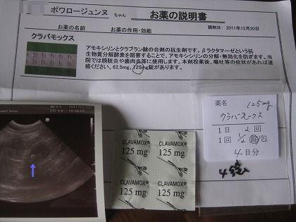 8-1112ぶ0193