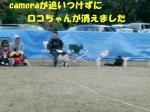 CIMG4814s.jpg