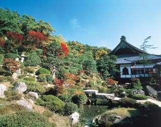 敦賀西福寺