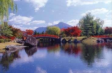 秋の紫式部公園