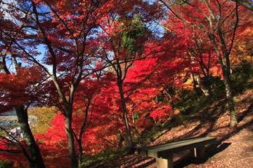 西山公園・嚮陽庭園