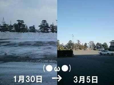 駐車場の雪はなくなってます