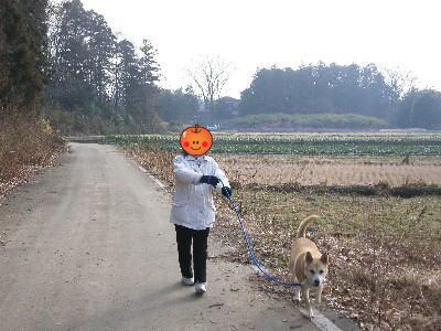 ゴンタ散歩