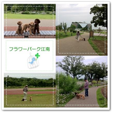 なかなかいい公園でした。