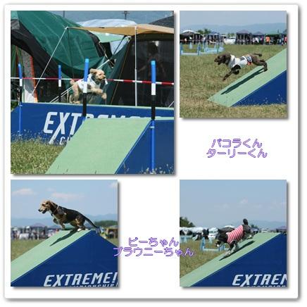2011-7-17-14.jpg