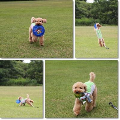 2011-7-19-3.jpg