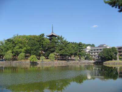 猿沢池と興福寺
