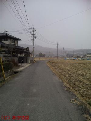 azuki1009.jpg