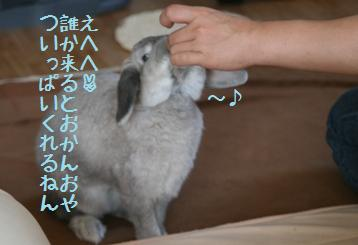 20091101_5.jpg
