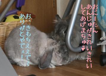 20091101_8.jpg