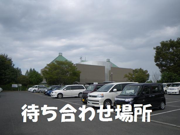 IMGP1293.jpg