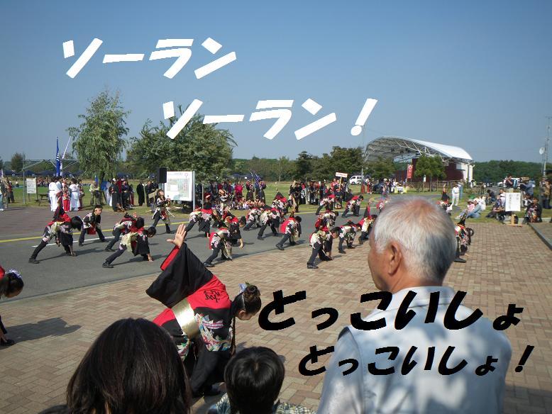 IMGP1441.jpg