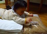 2010.10.02【ねた】 (4)