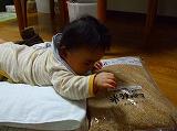 2010.10.02【ねた】 (2)